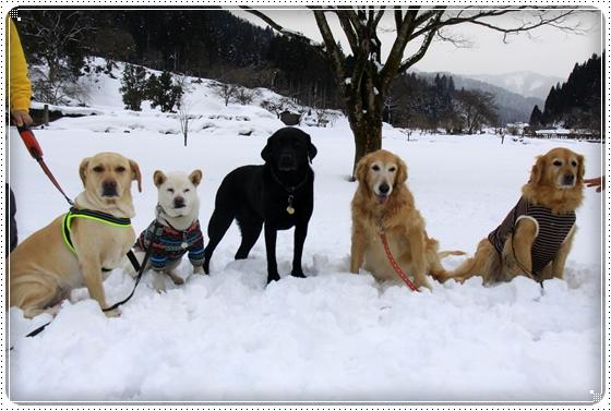 2012,2,20雪遊び15