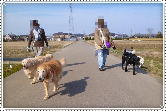 2012,2,22お散歩6