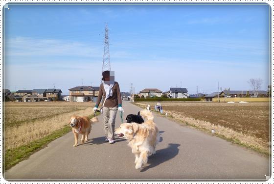 2012,2,22お散歩4