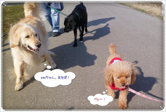 2012,2,22お散歩7