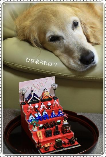 2012,2,25お散歩7