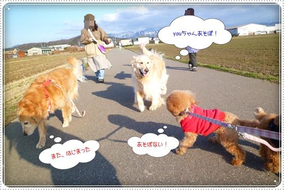 2012,2,29お散歩8