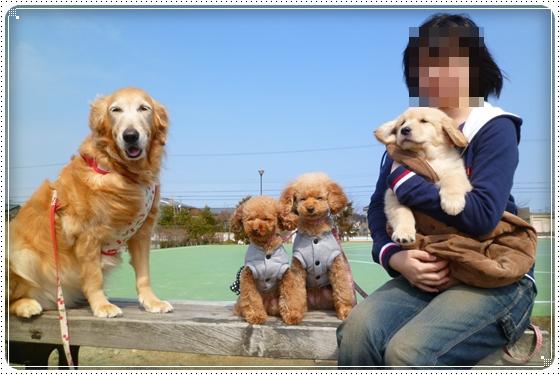 2012,3,11お散歩4