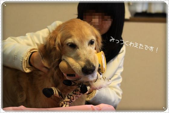 2012,3,11お散歩7