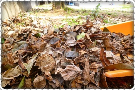 2012,3,18お庭遊び1