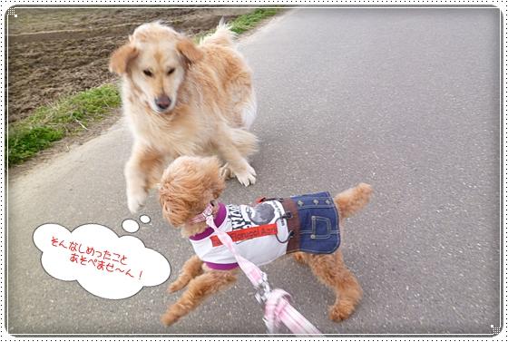 2012,4,4お散歩5