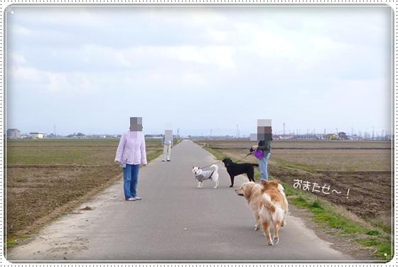 2012,4,4お散歩1