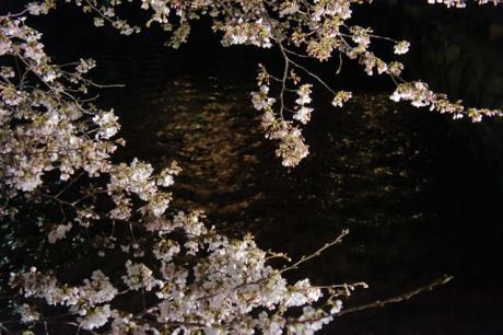 gion_shirakawa_2.jpg