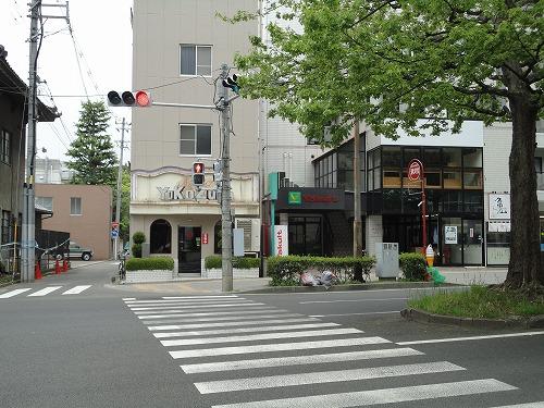 1105yokozuna001.jpg