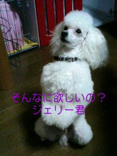 061011_2011~02001.jpg