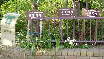 神戸市指定の名誉花壇