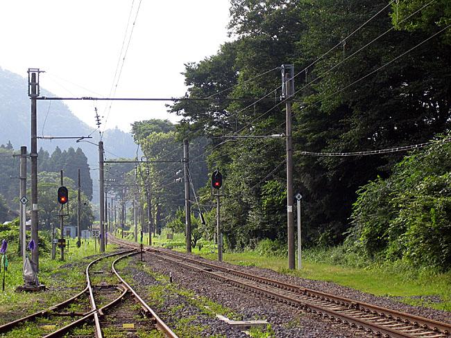 shirasawa1.jpg
