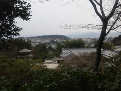 京都を一望