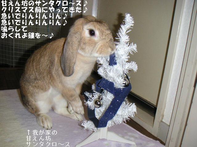甘えん坊のサンタクロ~ス♪