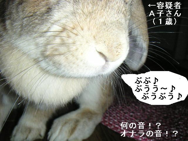 おならの音!?