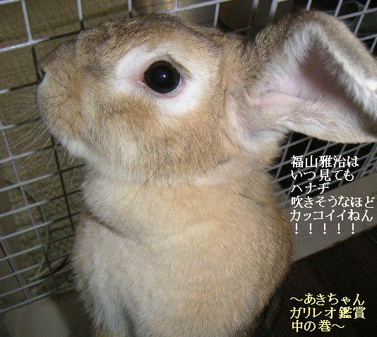 あきちゃんとガリレオ鑑賞の巻。