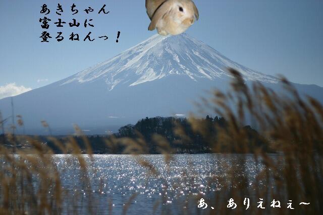富士登山。