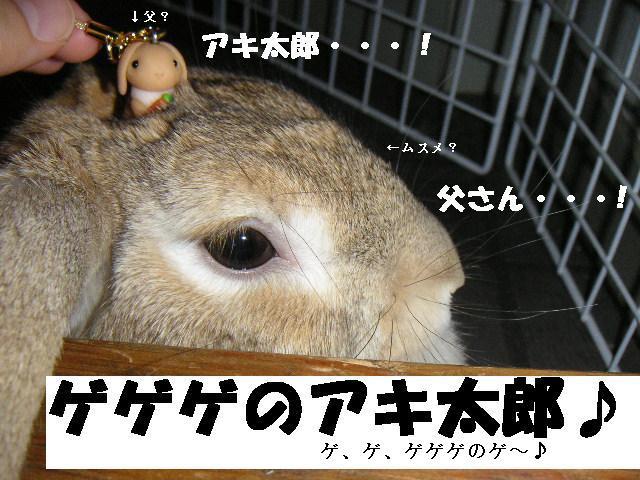 ゲゲゲのアキ太郎♪