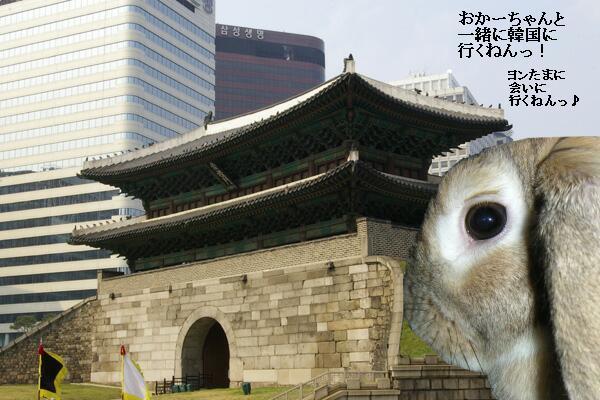 あきちゃん韓国に行くの巻。