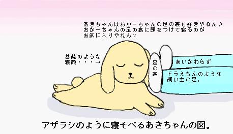 寝そべり菩薩顔あきちゃん。