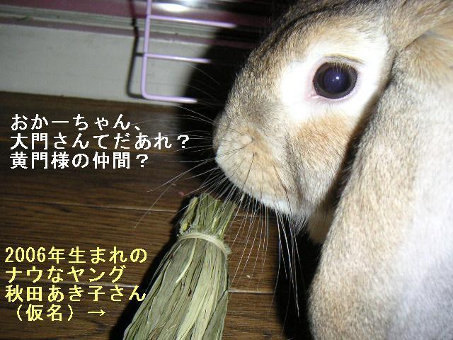 あきちゃんは大門さんを知らない。平成生まれだから。