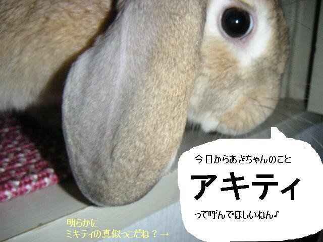 あきちゃんのあだ名はアキティ!?