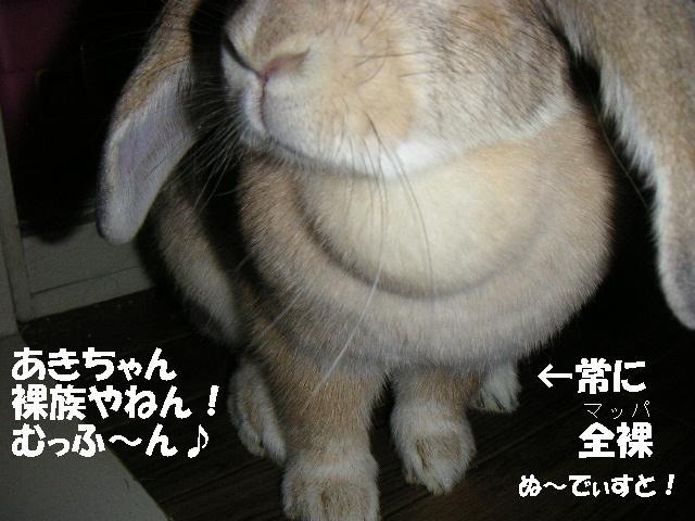 あきちゃんは裸族!?