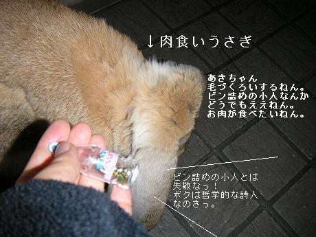 あきちゃんはスナフキンに興味がなかった。