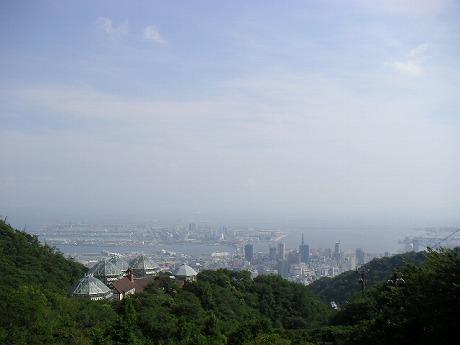 山頂から見た景色。