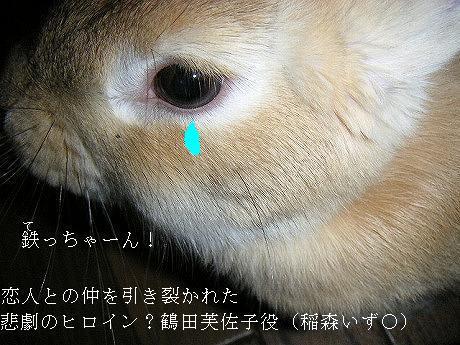 悲劇のヒロイン?(鶴田芙佐子役)