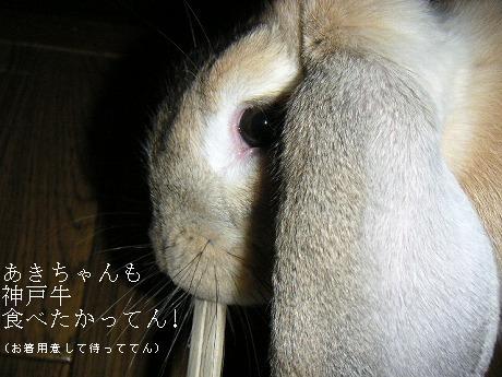 神戸牛食べたかってん!