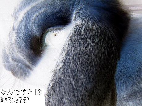衝撃の事実発覚!