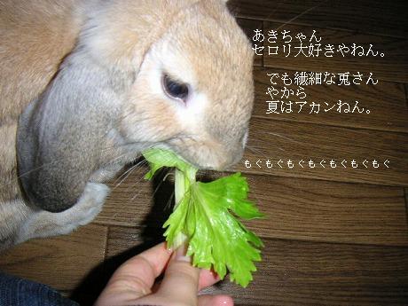 あきちゃんはセロリが好きv