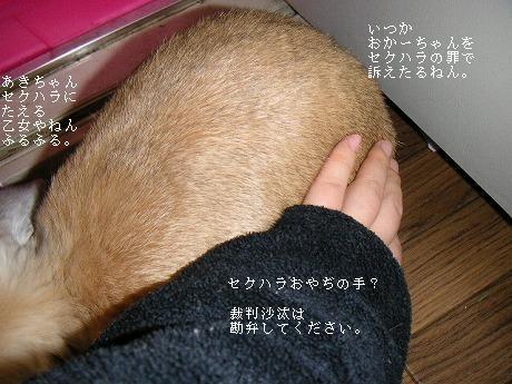 セクハラおやぢの巻(?)