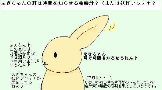 あきちゃんの耳の正体・それは・・・!?