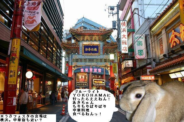 憧れのブルーライト横浜~♪
