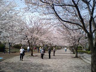 20070401多摩御陵公園