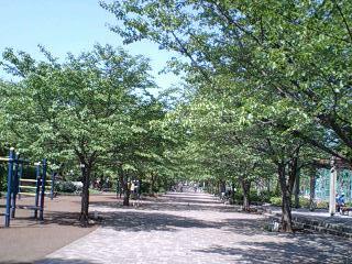 20070505御陵公園