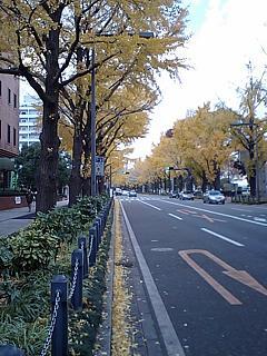 20071205横浜市街s