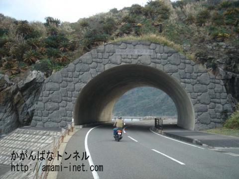 かがんばなトンネル