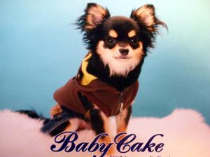 babycake.jpg