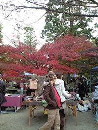 2011_1127上賀茂03