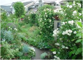 2006年の庭