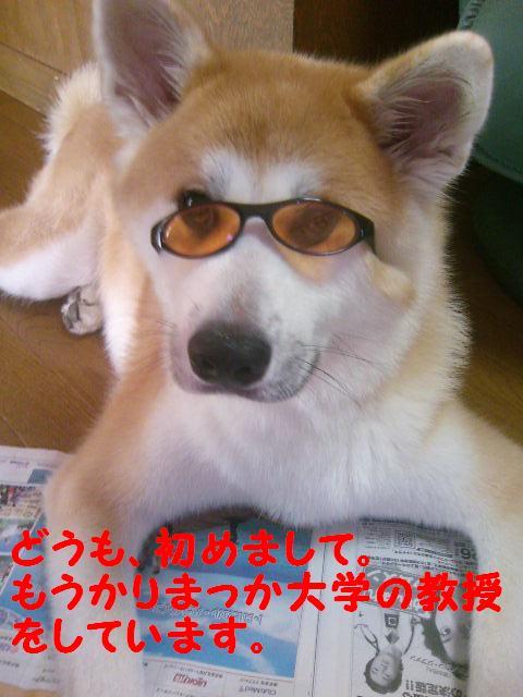 メガネっこあん
