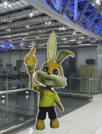 thai 空港うさぎ