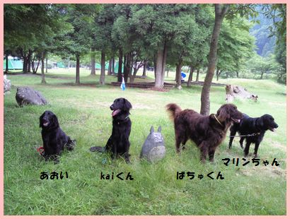 NEC_0518.jpg