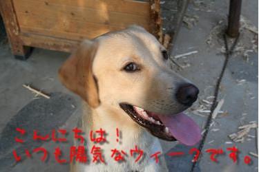20060905001012.jpg