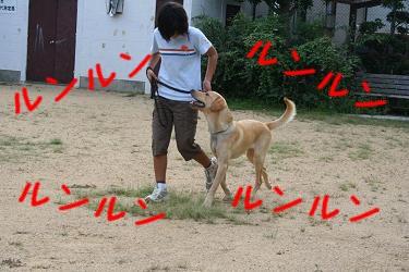20060912005032.jpg