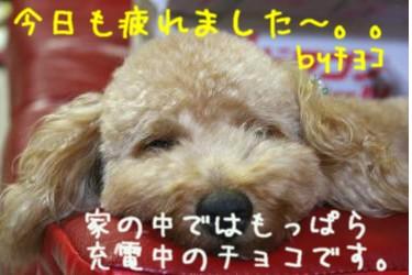 20060926010010.jpg