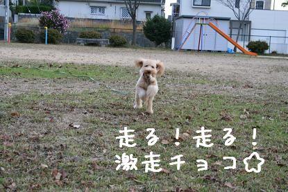 20061211181052.jpg